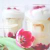 Himbeer Trifle