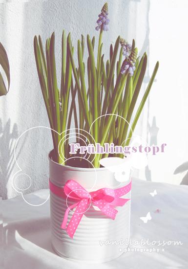 diy : Frühlingstopf
